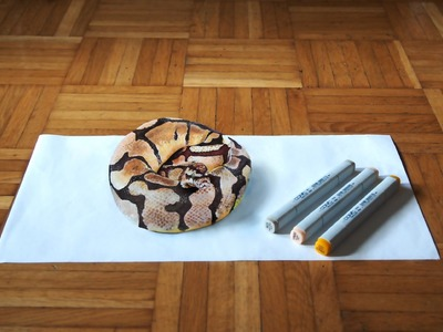 3D ball python copic drawing
