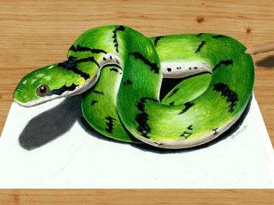 3D Colored Pencil Drawing: Cute Green Snake - Speed Draw   Jasmina Susak
