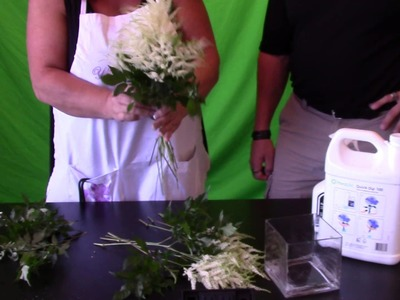 How to Make a Astilbe Bouquet (DIY)