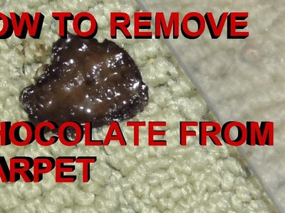 BEST Way to Remove Chocolate Ice Cream and Chocolate Syrup from Carpet
