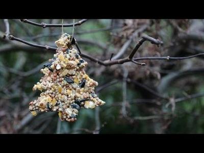 DIY Birdseed Christmas Ornaments