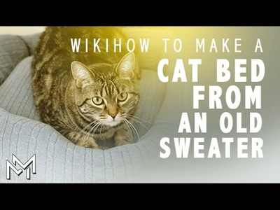How to Make a Cat And Dog Beds of sweaters and pillows