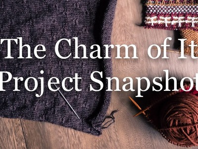 The Charm of It Knitting Podcast Episode 36: Project Snapshot of December 6th