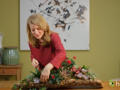 How to Make a Living Centerpiece That Turns Into Party Gifts