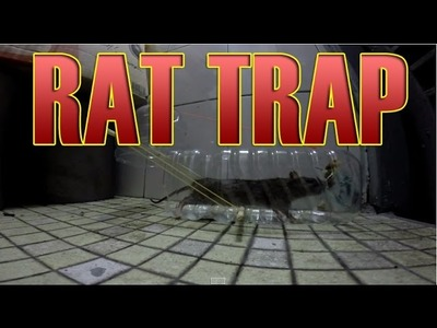 Homemade DIY mouse Rat Trap for rat control - How to make