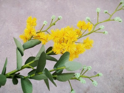How To Make Acacia Podalyriifolia Flower From Crepe Paper  - Craft Tutorial
