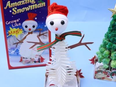Amazing Snowman DIY Magical Snowman Making Kit