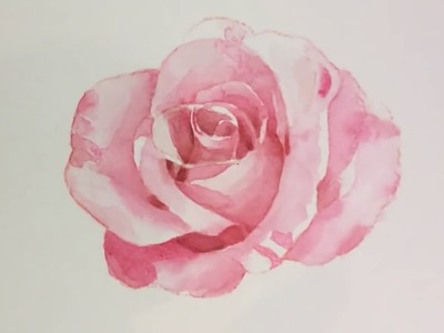 How to draw a rose - watercolor tutorial