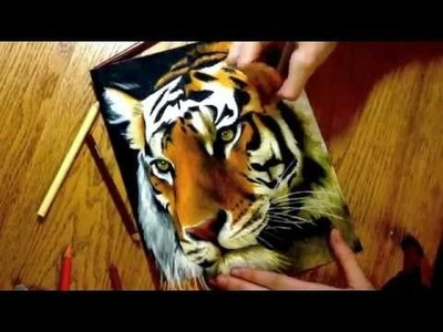 Realistic Colored Pencil Drawing of a Tiger