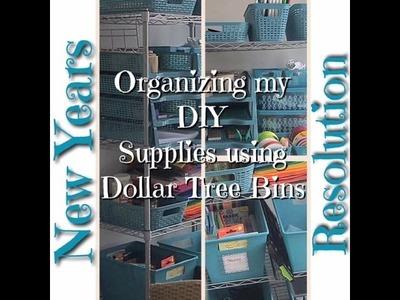 Organizing my DIY & Crafting supplies using Dollar Tree Bins
