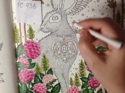 Magisk Gryning - Rabbit in Raspberries - part 2 - Coloring Tutorial