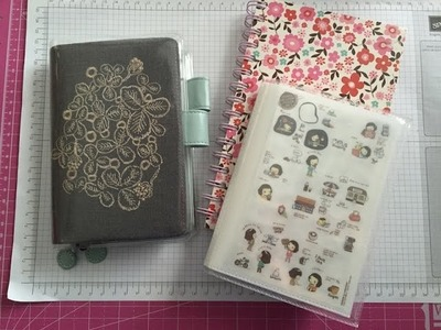 Diary Sticker Organizer and Update on my Hobonichi Techo