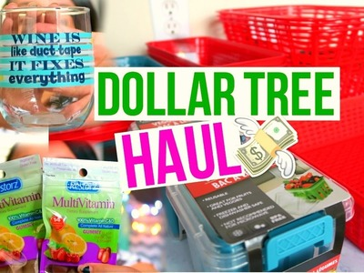 DOLLAR TREE HAUL JANUARY 2017 | CHEAP ORGANIZATION | Page Danielle
