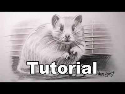 How to draw a Hamster. animal drawings. #28