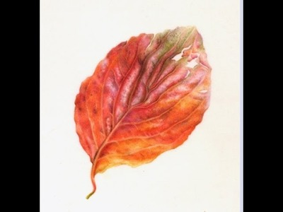 Painting Watercolor Autumn Leaf
