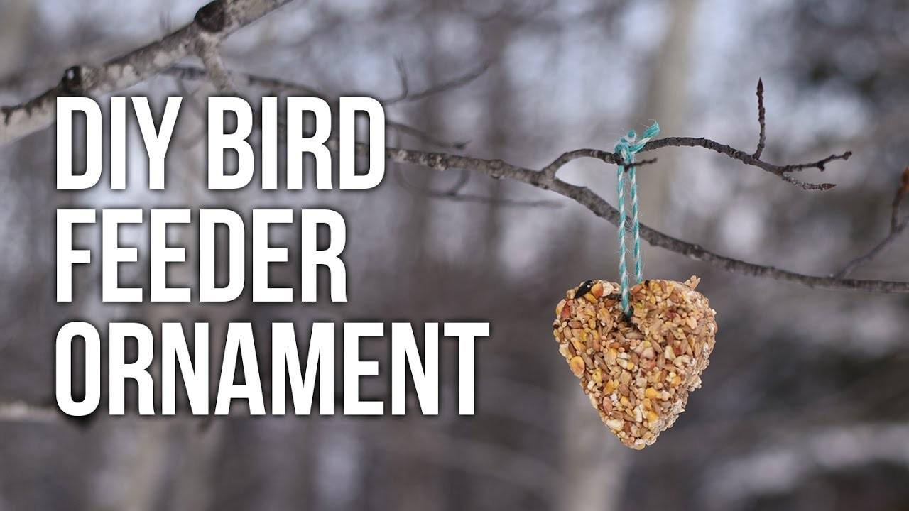 Tip Tuesday: DIY Bird Feeder Ornament Kids Craft