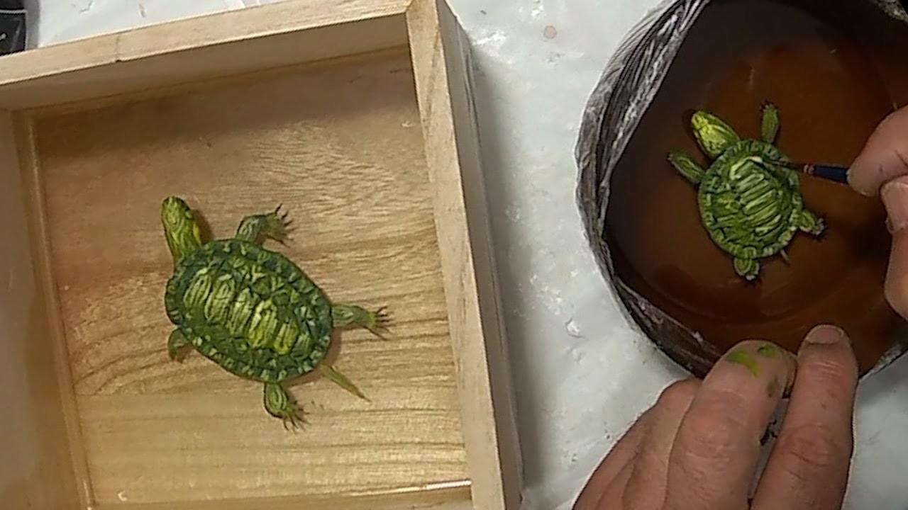 DIY 3D Cute Baby Turtles in a box