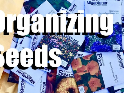 How I Organized My Seed Collection -  DIY,  Simple & Inexpensive