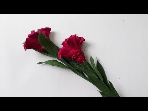 DYI   How to make paper flower   Cockscomb by crepe paper