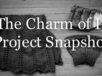 The Charm of It Knitting Podcast Episode 38: Project Snapshot of January 23rd