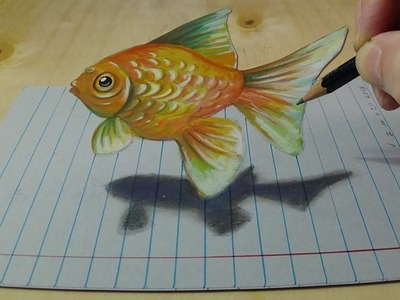 Drawing Goldfish on Lined Paper, Anamorphic Art