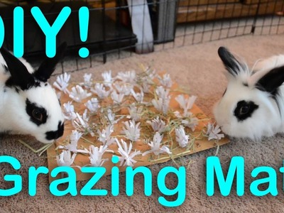 Grazing Mats for Chewing | DIY Bunny Toy