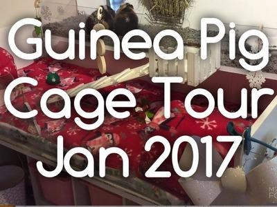 DIY Guinea Pig Cage Tour January 2017 - Winter Themed Fleece! Piggiepigpigs!