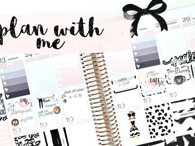 Plan with Me ft. Paper Dove Shop!