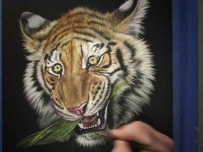 Amazing Tiger Art