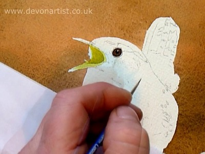 Wren Eye Bird Watercolour Painting Lesson- How to paint a birds eye
