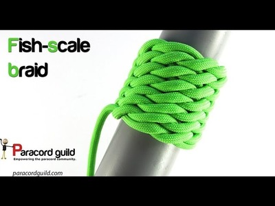 Fish-scale braid