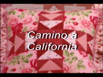 "Peonia & Camino a California ""Peony & Road to California"""