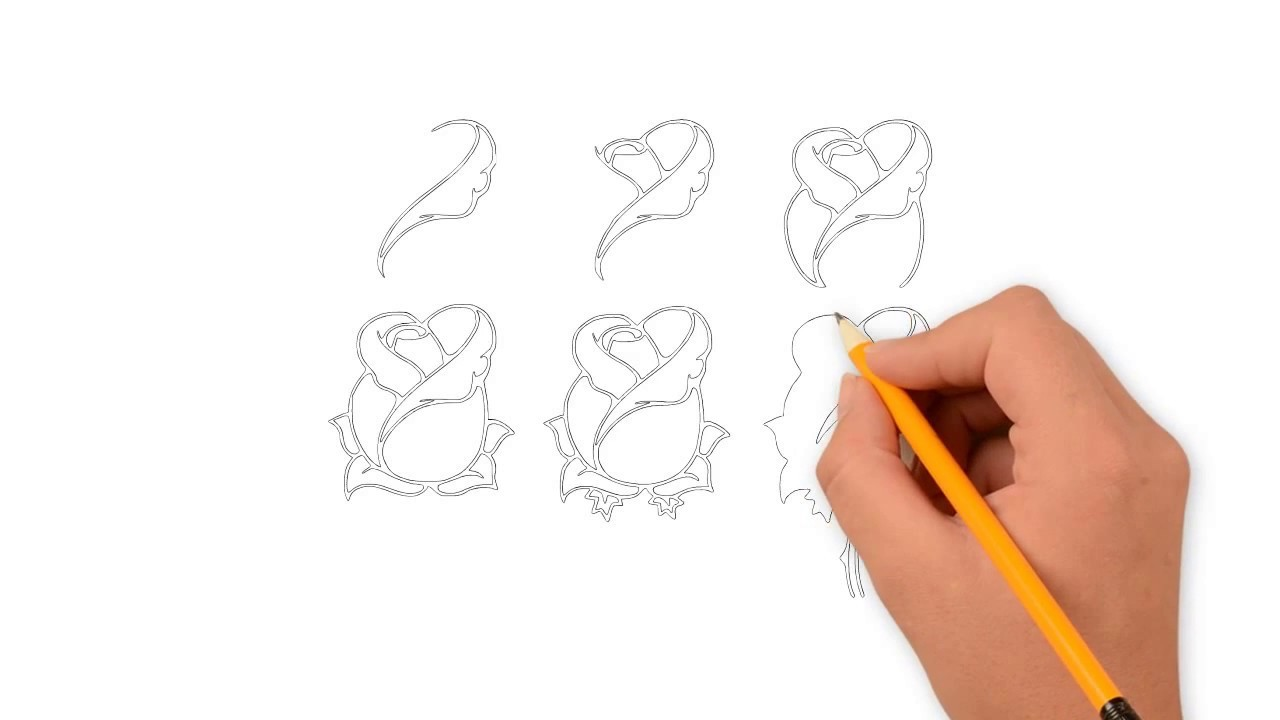 Drawing Rose Draw Rose Tutorial Draw Rose Easy Step By Step