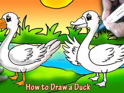 How to Draw a Duck Easy Art and Shade