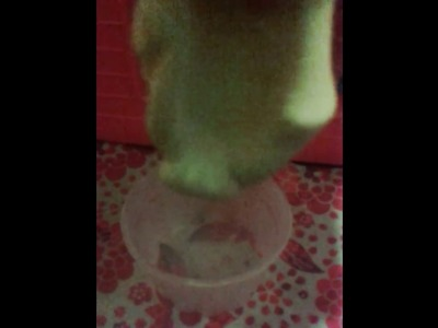 How to make slime without glue and borax, eye contact solution, and eye drops