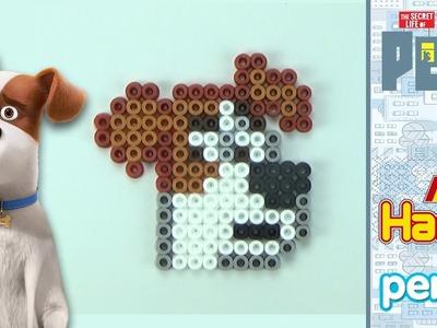 Max ► Pets - Vita da animali | pyssla HAMA beads | Pixel art - camera veloce