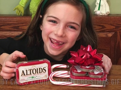 Candy Cane Crafts for Christmas, Candy Canes Christmas Gift Ideas,