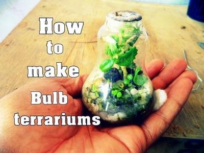 How to Make Bulb Terrarium With Update | Grow Succulent Plant In Light Bulb. Mammal Bonsai