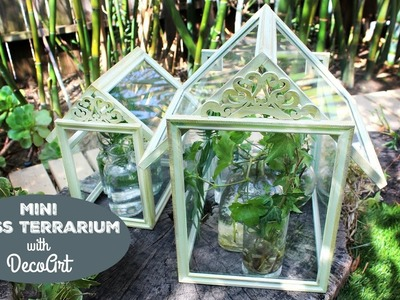 HOW TO: Mini Glass Terrariums