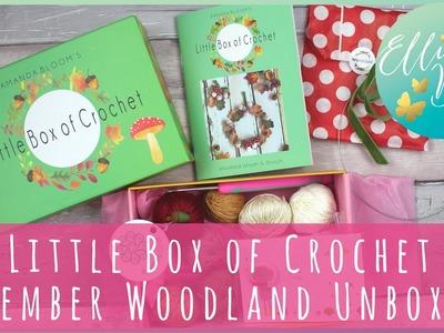 Little Box of Crochet - November Woodland Unboxing!