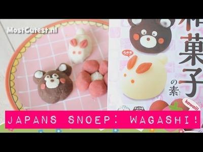 Japans snoep! Kawaii DIY Candy Kit Wagashi Flower&Bear van MostCutest.nl ^__^ (gesloten)