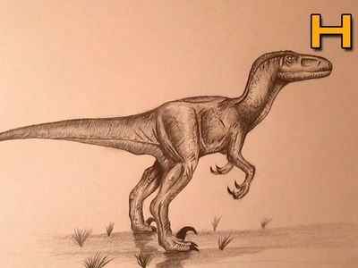How to Draw a Velociraptor Step by Step With Pencil - Timelapse