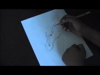 How to Draw an Eragon Dragon: Part 1