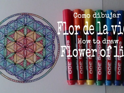 Flor de la vida arcoiris.Flower of life rainbow. Subtitle. English - Spanish