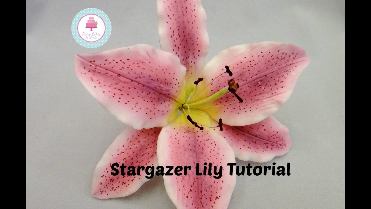 How to make a Sugar Stargazer Lily using flower paste or gum paste