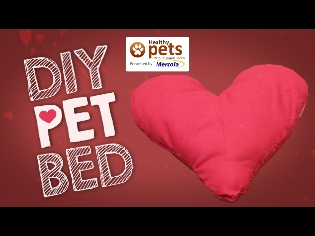 DIY: How to Make a Pet Bed