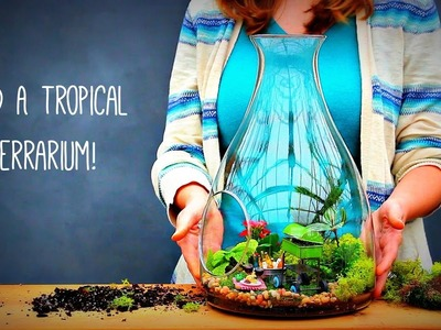 How to Build a Tropical Terrarium