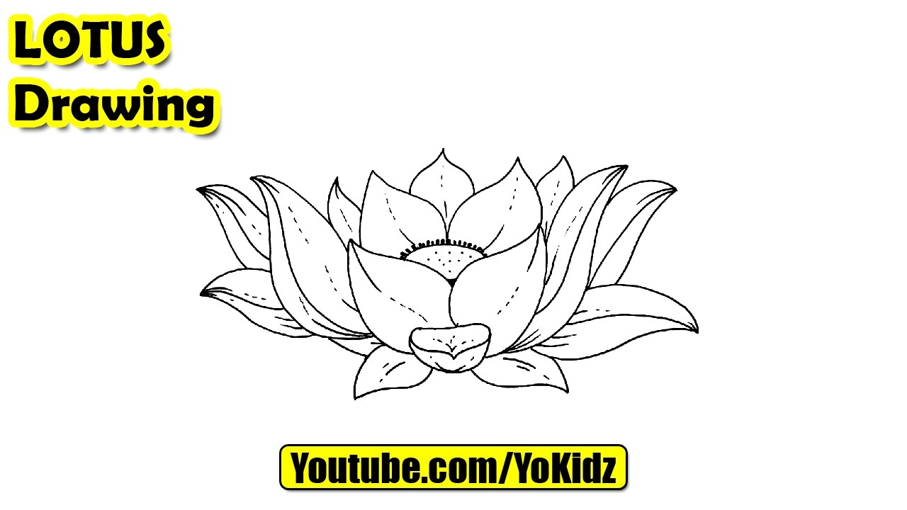 How To Draw A Lotus Flower For Kids