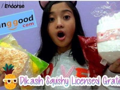 DIKASIH SQUISHY LICENSED GRATIS?!?! #4 Review Package from banggood.com | Friendship DIY