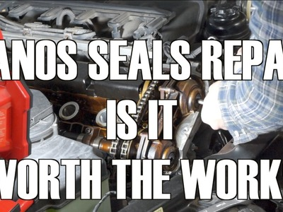 E46  Double Vanos Seals DIY and Impressions